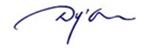 Logo-dyon